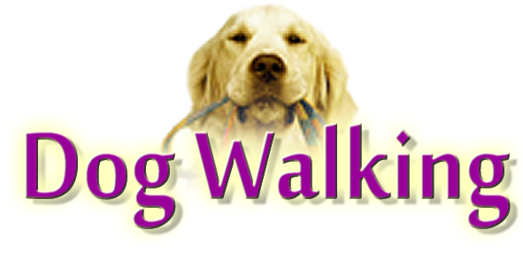 READ ABOUT OUR DOG WALKING SERVICE