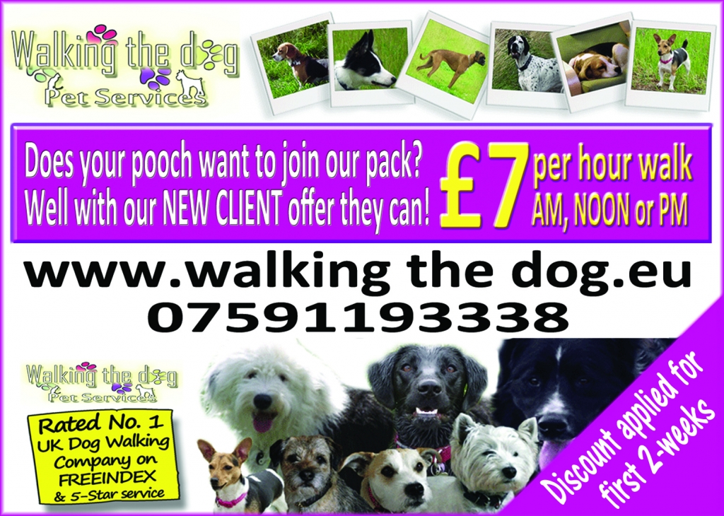 Our latest Dog Walking Offer
