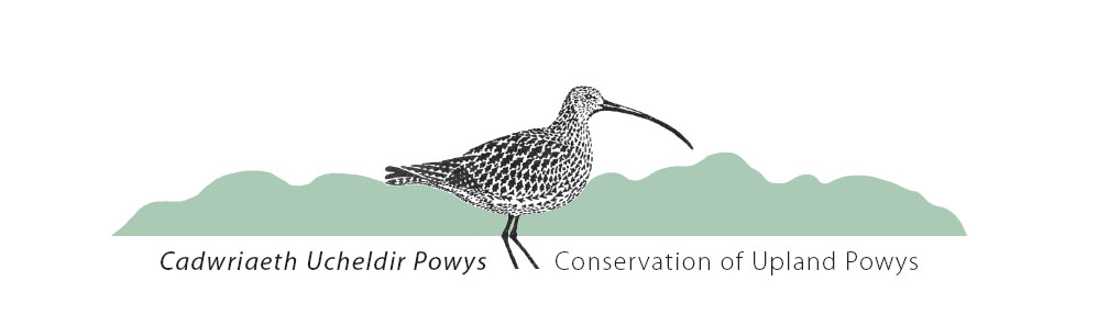 go to Conservation of Upland Powys and Mid Wales Wind
