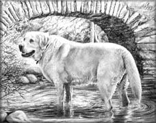 Full Body Pencil pet Portrait