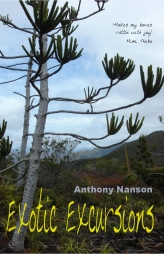 Exotic Excursions by Anthony Nanson