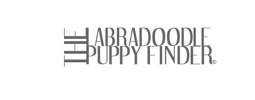 labradoodlepuppyfinder.com Logo
