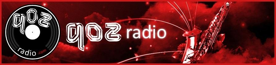 qozradio.com Logo